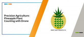 Precision Agriculture: Pineapple Plant Counting with Drone