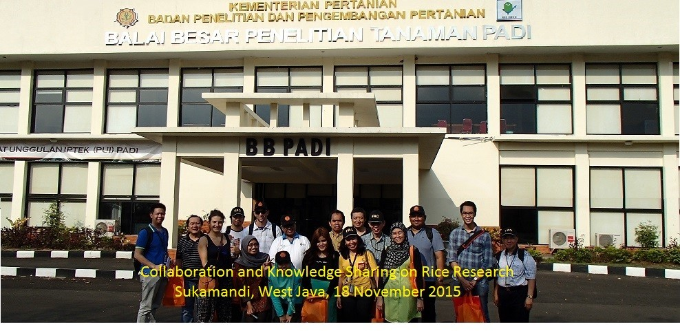 Collaboration and Knowledge Sharing on Rice Research Sukamandi